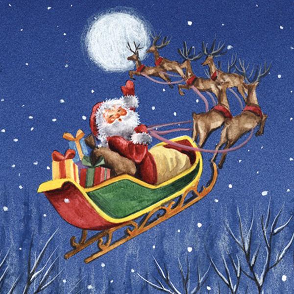 Santa on the Sleigh